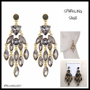 BLACK CRYSTAL PAVE STATEMENT EARRINGS A2C